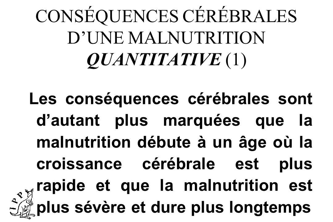 CONSÉQUENCES CÉRÉBRALES D'UNE MALNUTRITION QUANTITATIVE (1)