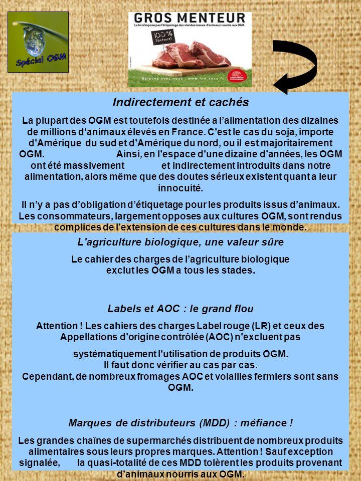 Spécial OGM Indirectement et cachés