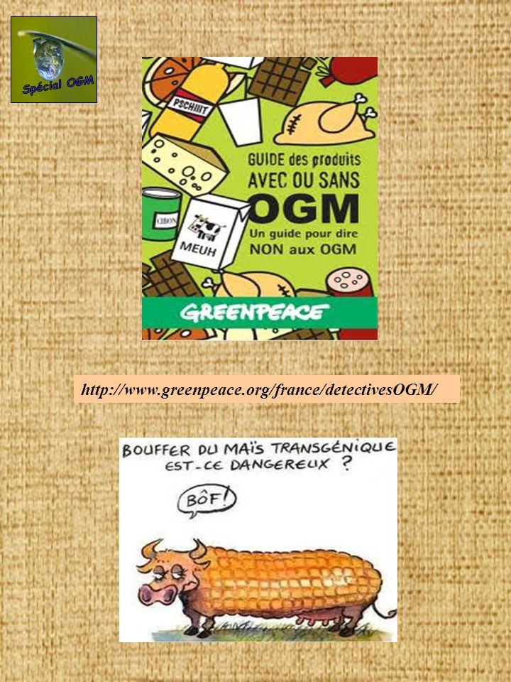 Spécial OGM http://www.greenpeace.org/france/detectivesOGM/