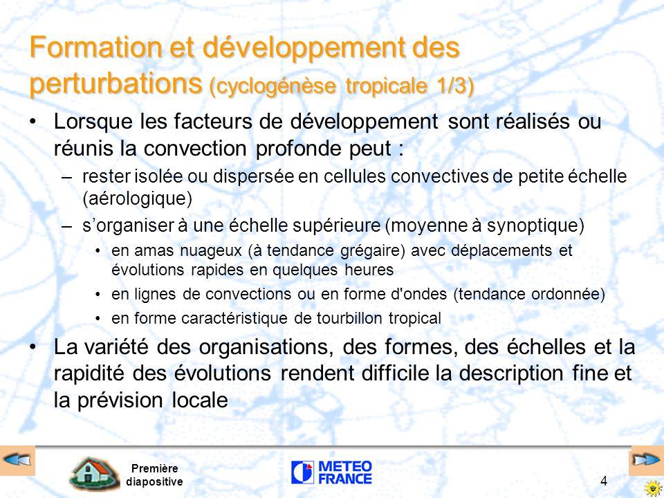 Formation et développement des perturbations (cyclogénèse tropicale 1/3)