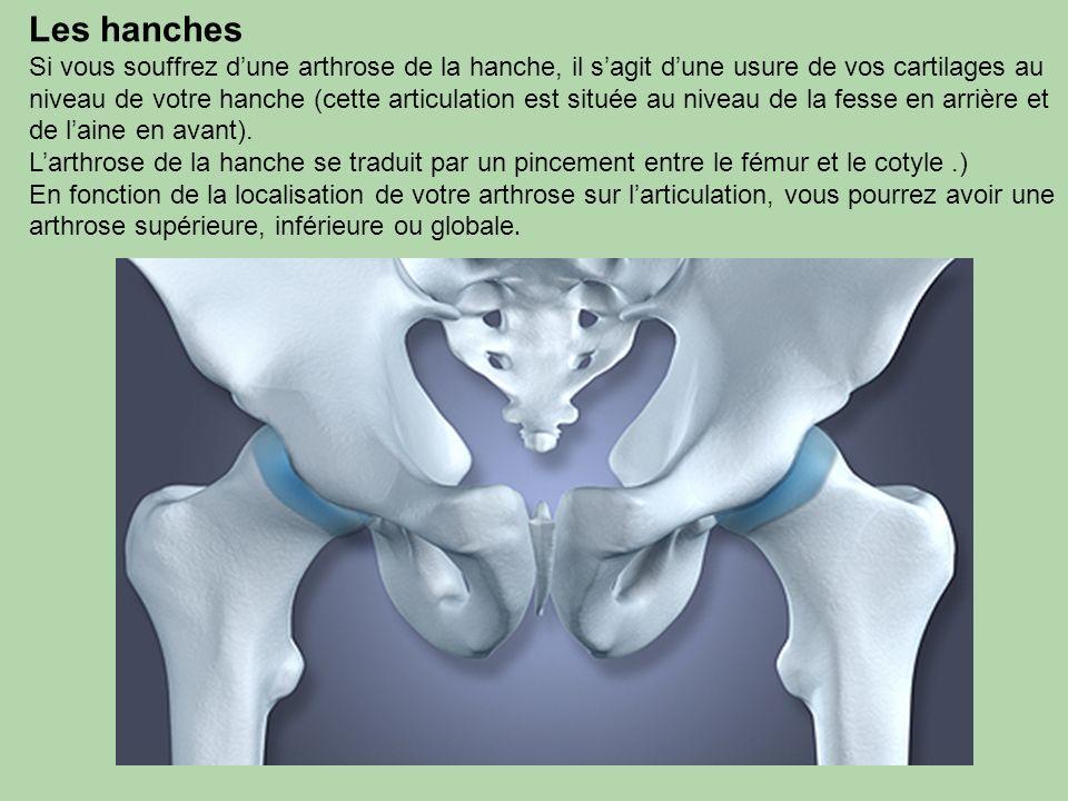 Les hanches