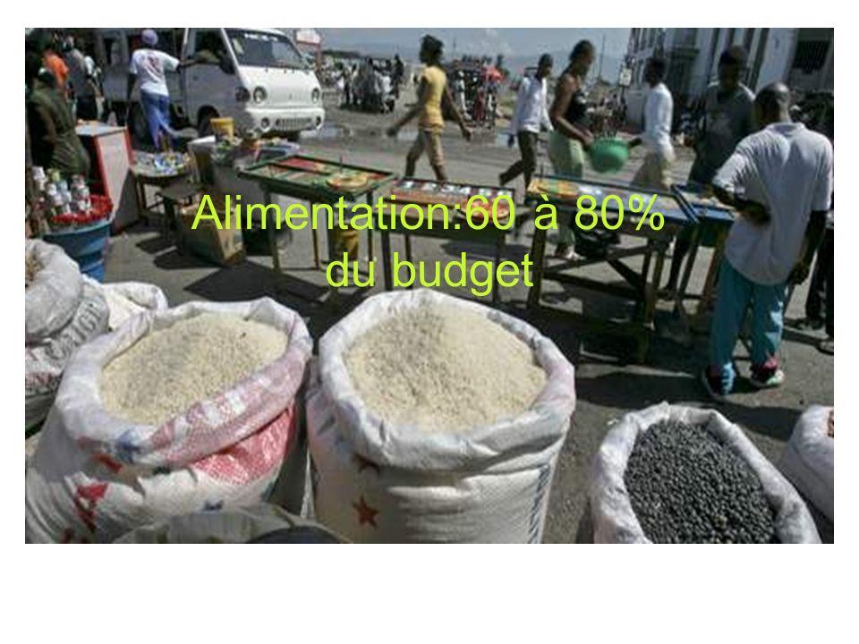 Alimentation:60 à 80% du budget