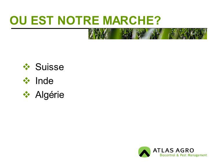 OU EST NOTRE MARCHE Suisse Inde Algérie