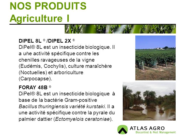 NOS PRODUITS Agriculture I