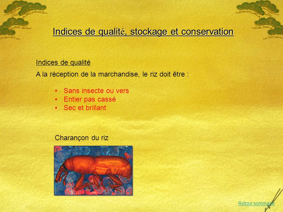 Indices de qualité, stockage et conservation