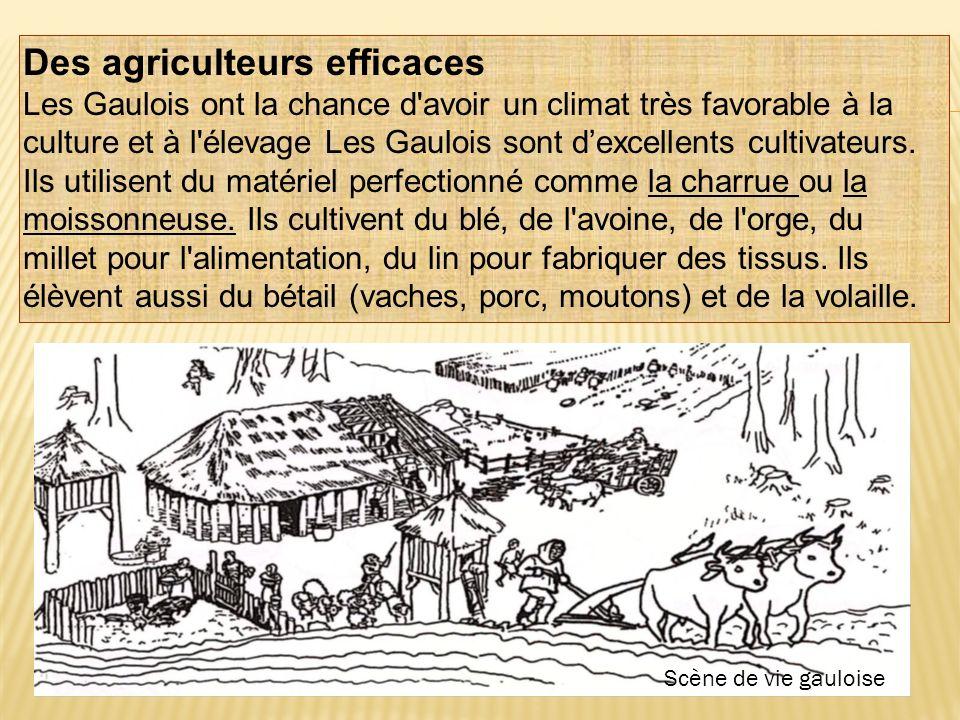 Des agriculteurs efficaces
