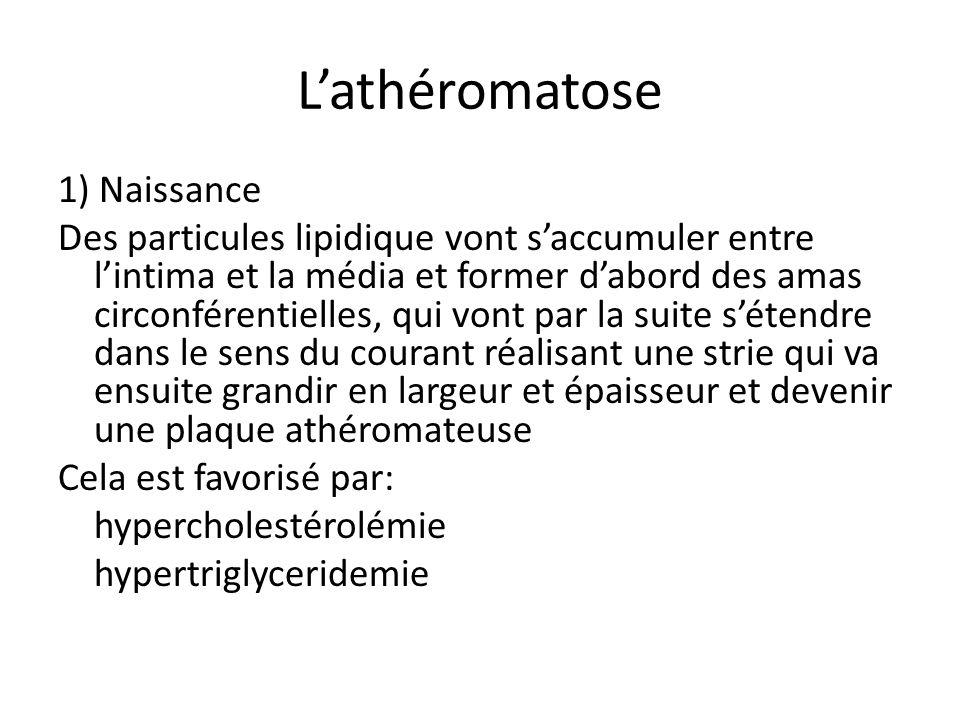 L'athéromatose