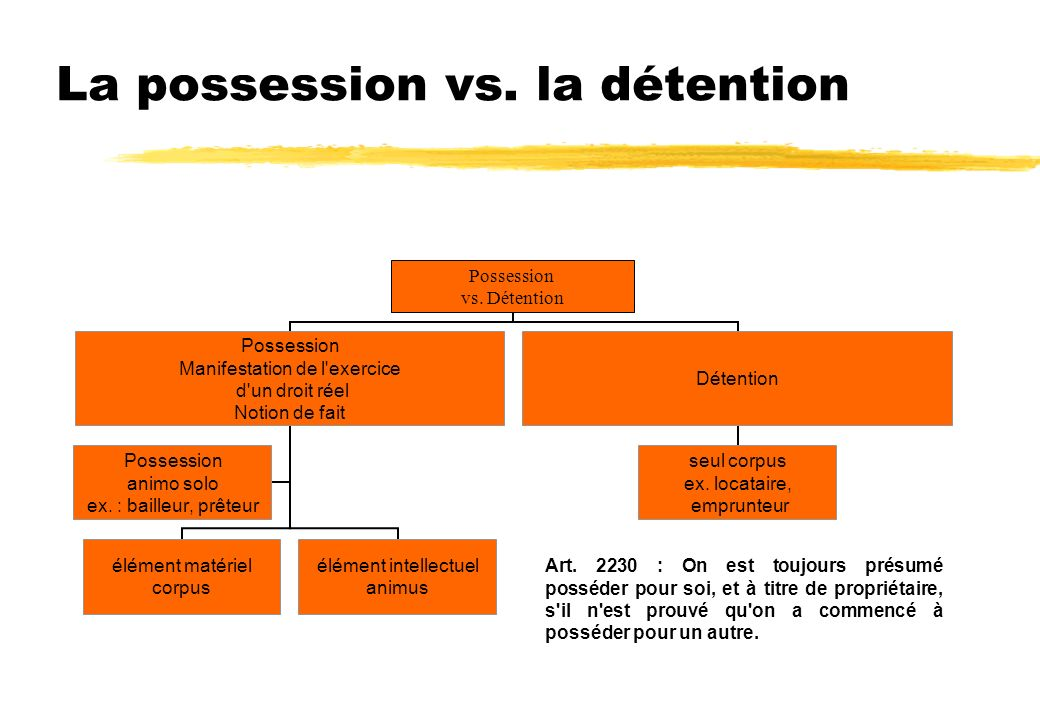 La possession vs. la détention