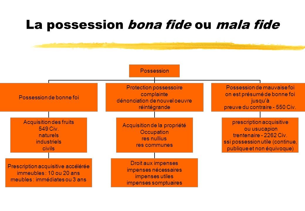 La possession bona fide ou mala fide
