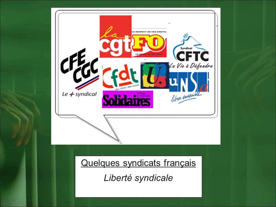 Quelques syndicats français