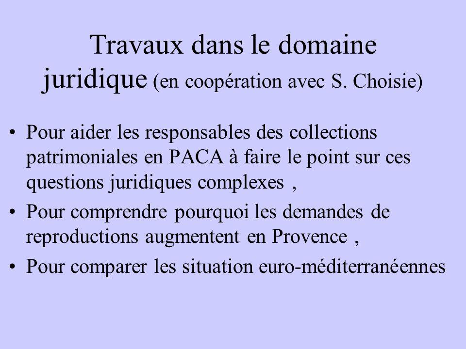 Travaux dans le domaine juridique (en coopération avec S. Choisie)