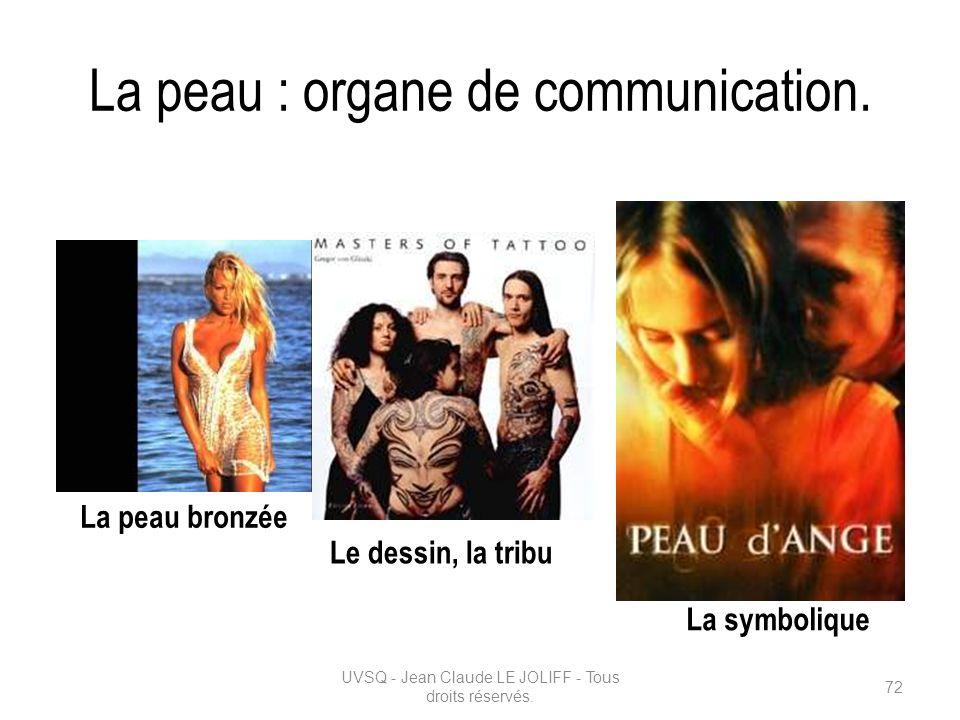 La peau : organe de communication.