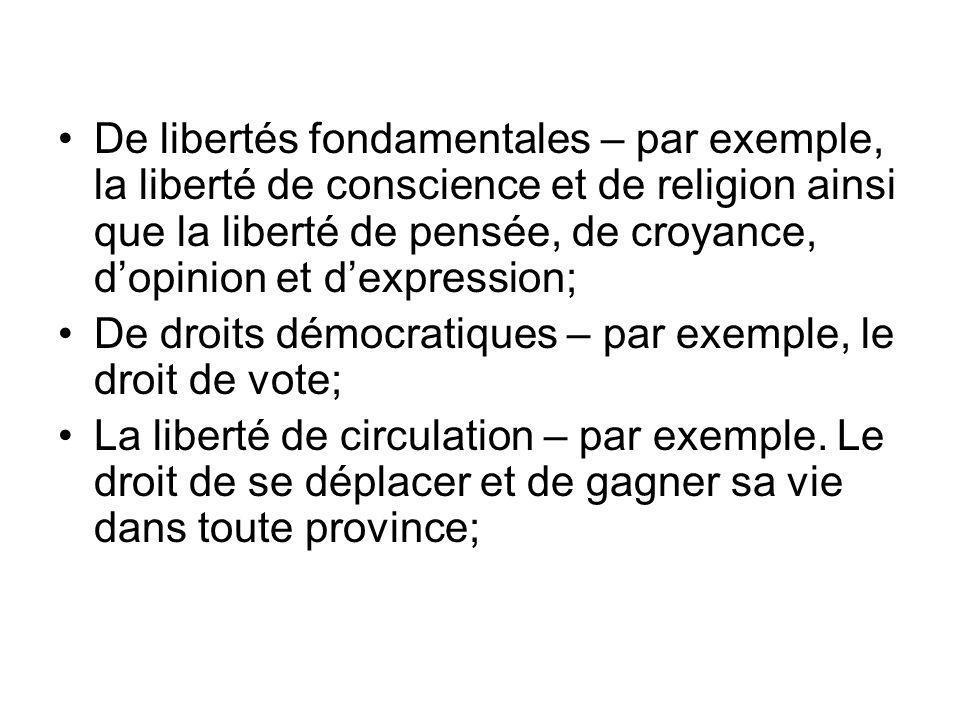 De libertés fondamentales – par exemple, la liberté de conscience et de religion ainsi que la liberté de pensée, de croyance, d'opinion et d'expression;