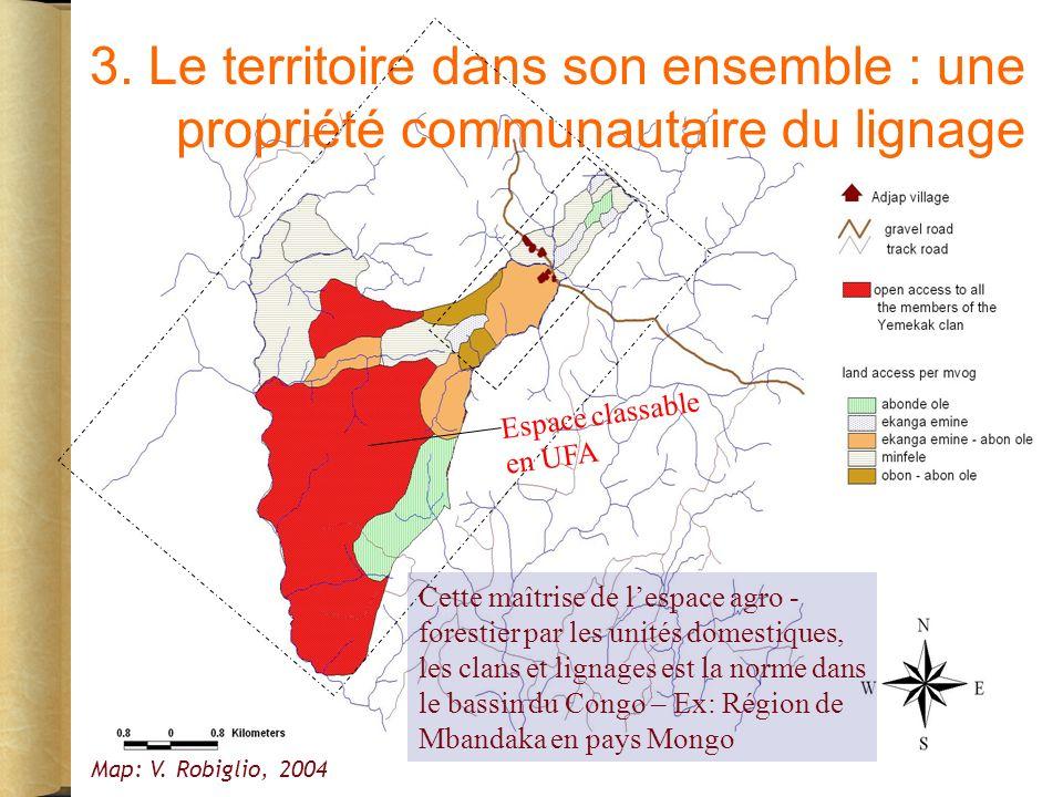 3. Le territoire dans son ensemble : une propriété communautaire du lignage