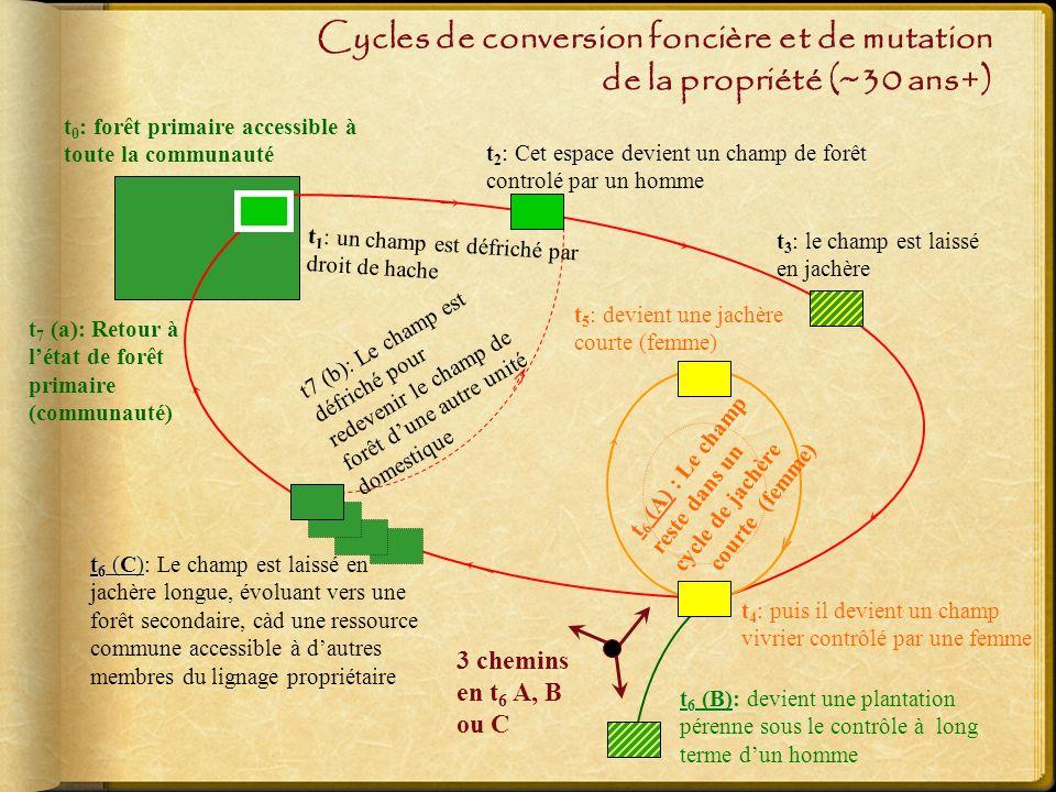 Cycles de conversion foncière et de mutation de la propriété (~30 ans+)
