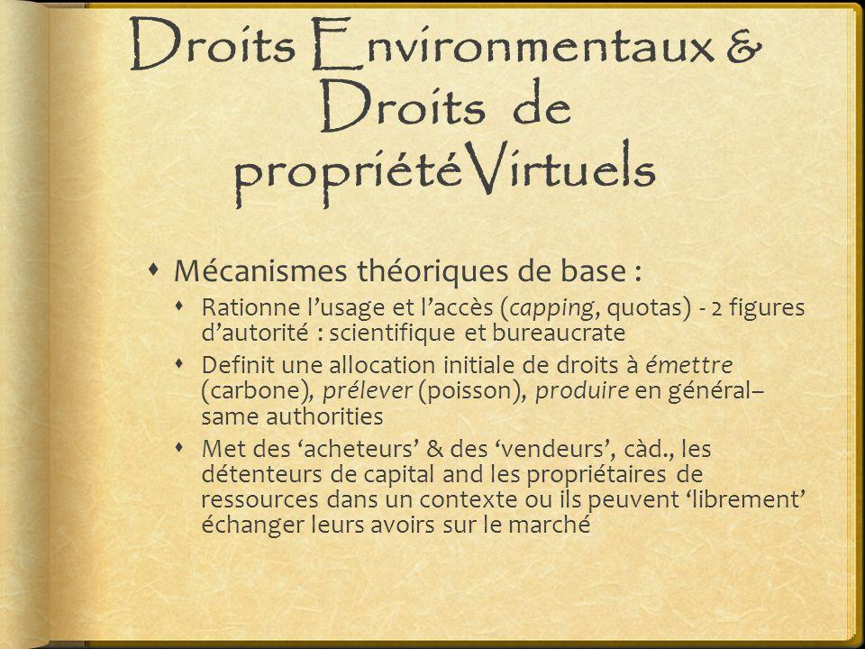 Droits Environmentaux & Droits de propriétéVirtuels