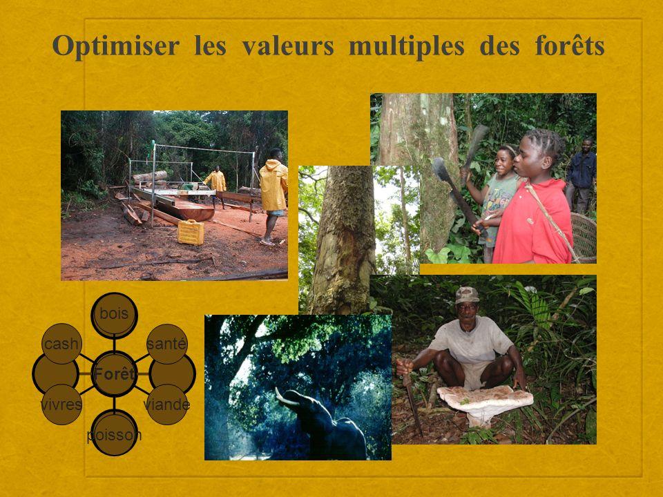 Optimiser les valeurs multiples des forêts