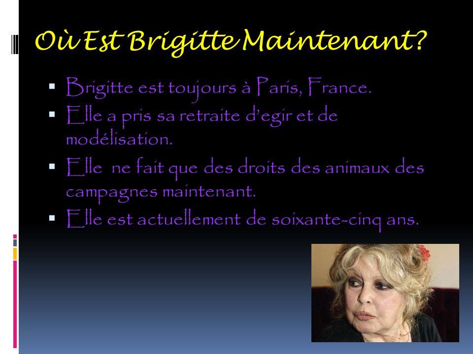 Où Est Brigitte Maintenant