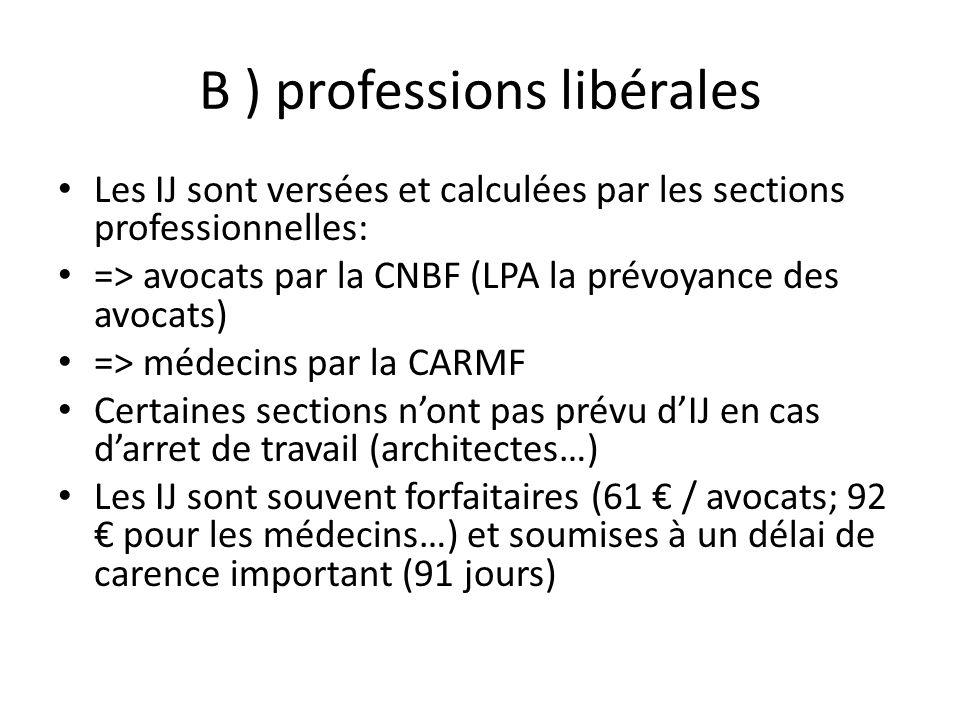 B ) professions libérales