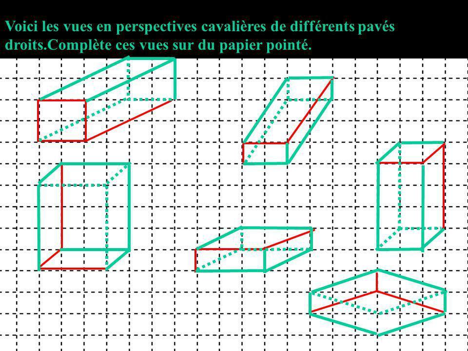 Voici les vues en perspectives cavalières de différents pavés droits