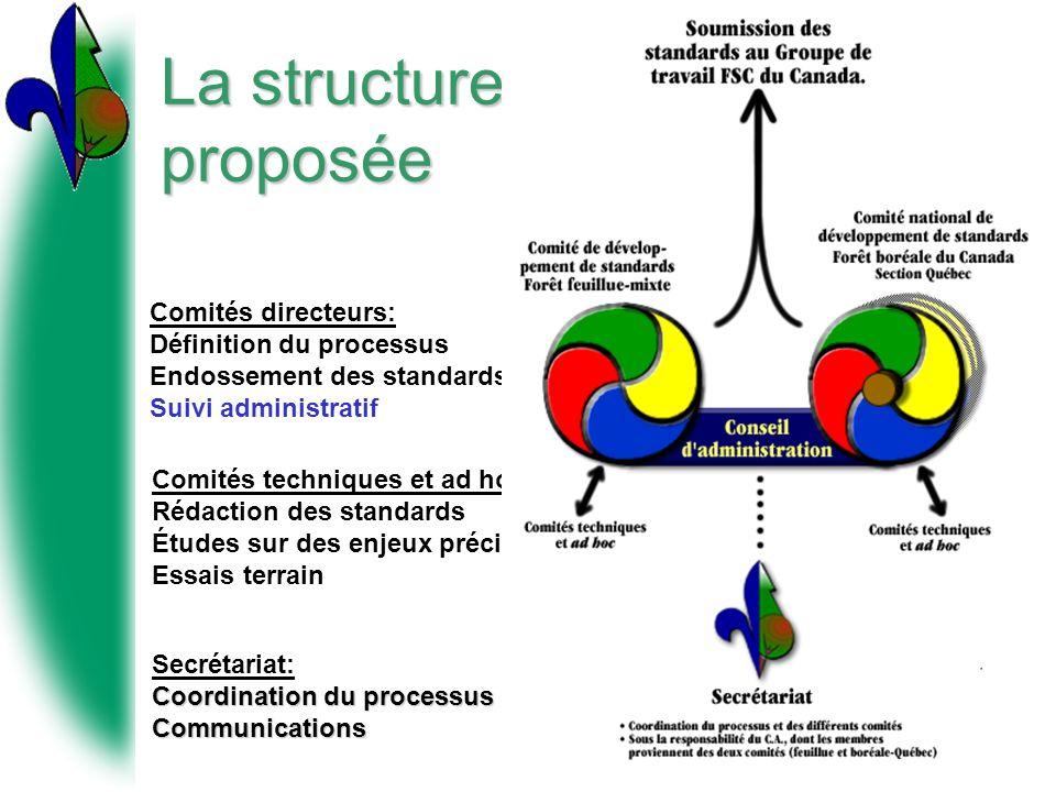 La structure proposée Comités directeurs: Définition du processus