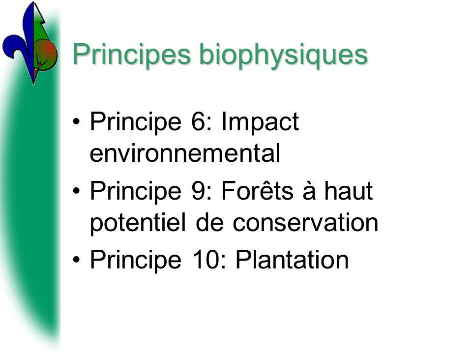 Principes biophysiques