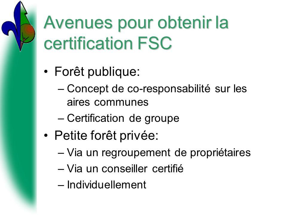 Avenues pour obtenir la certification FSC