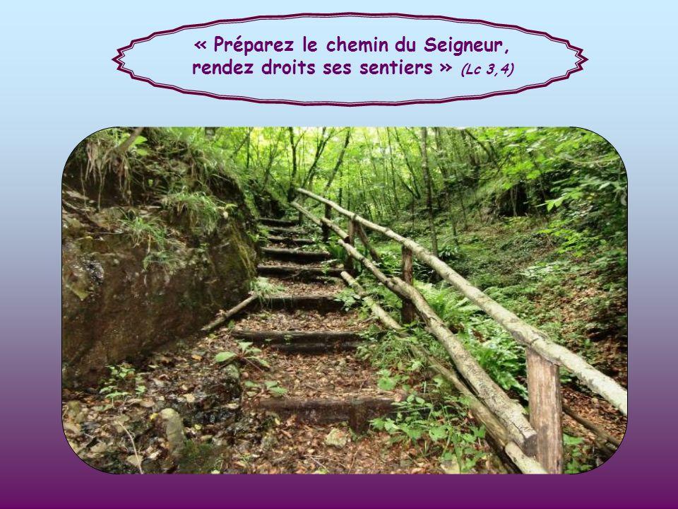 « Préparez le chemin du Seigneur, rendez droits ses sentiers » (Lc 3,4)