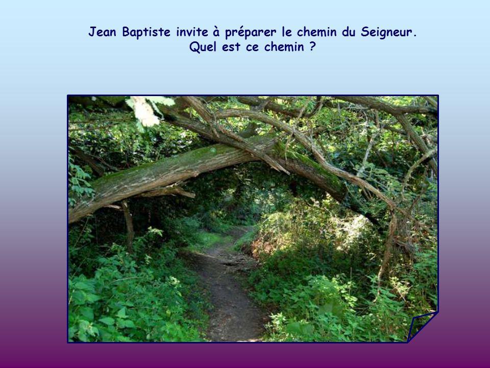 Jean Baptiste invite à préparer le chemin du Seigneur
