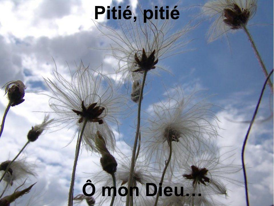 Pitié, pitié Ô mon Dieu…