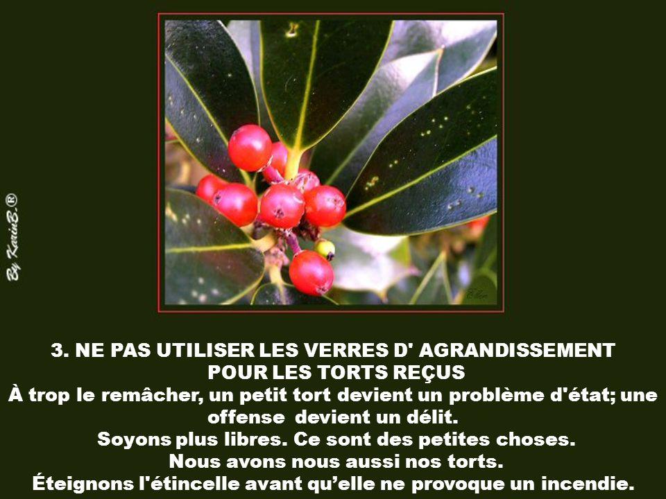 3. NE PAS UTILISER LES VERRES D AGRANDISSEMENT POUR LES TORTS REÇUS