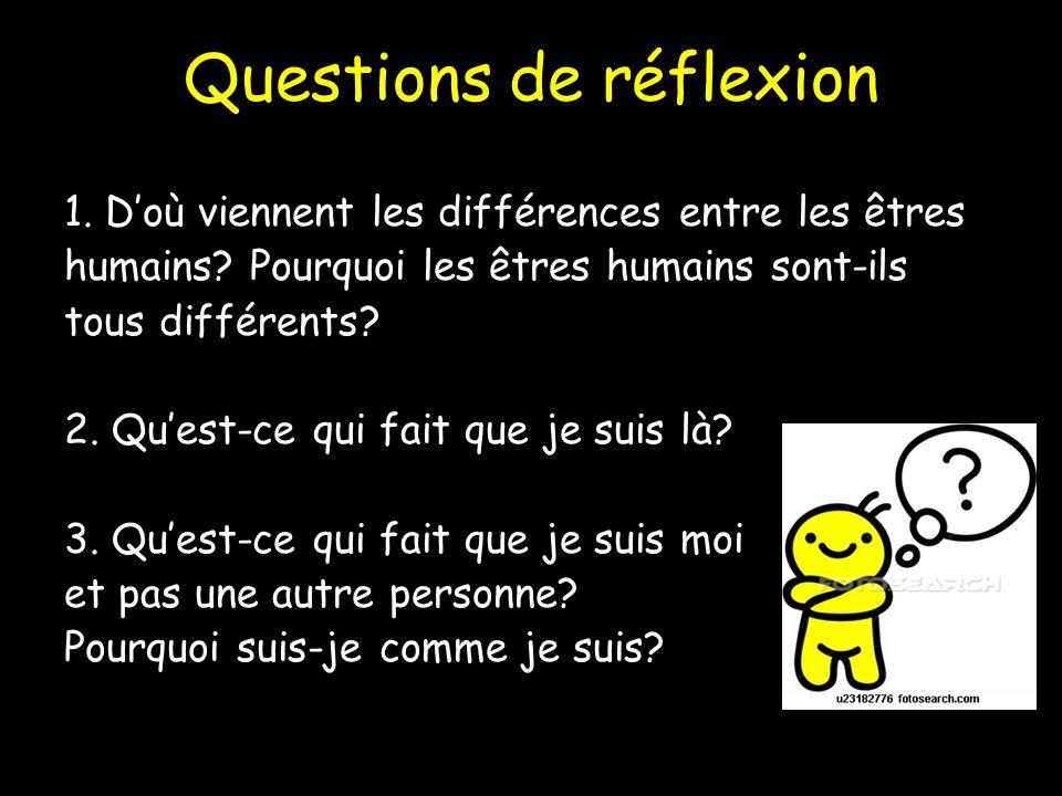 Questions de réflexion