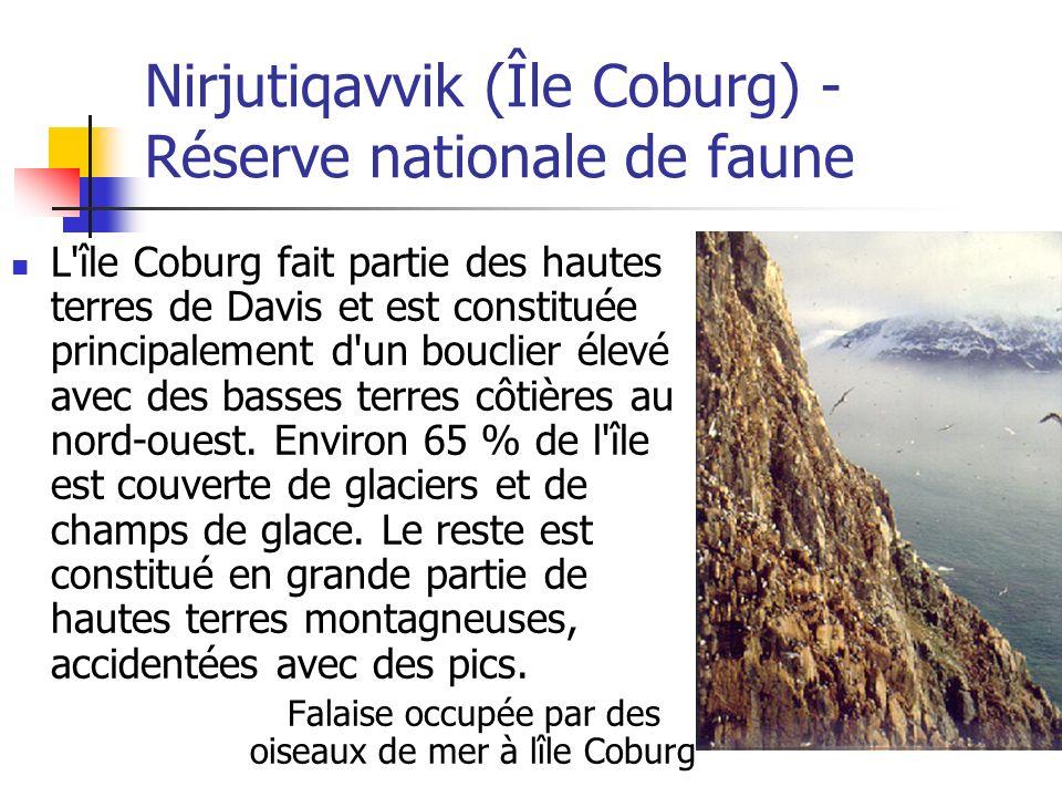 Nirjutiqavvik (Île Coburg) - Réserve nationale de faune