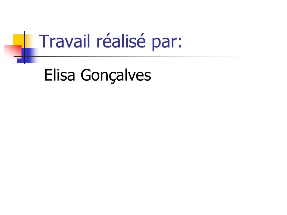 Travail réalisé par: Elisa Gonçalves