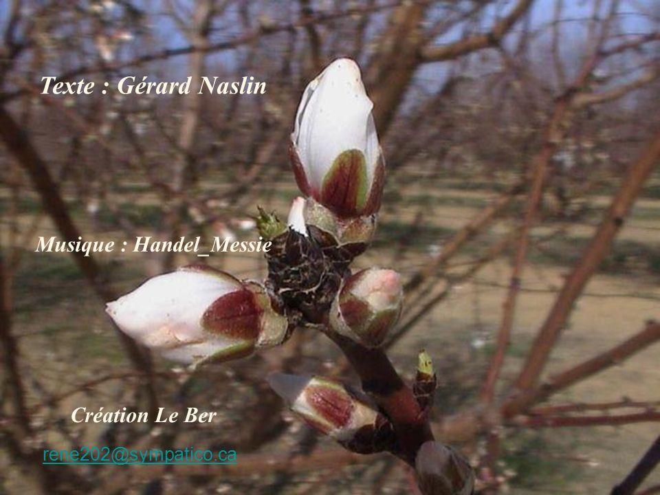 Texte : Gérard Naslin Musique : Handel_Messie Création Le Ber