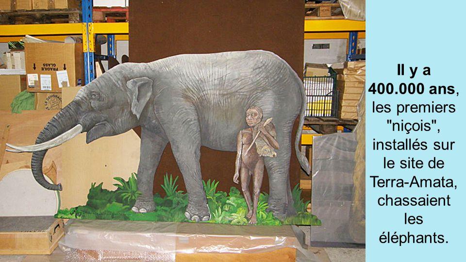 Il y a 400.000 ans, les premiers niçois , installés sur le site de Terra-Amata, chassaient les éléphants.
