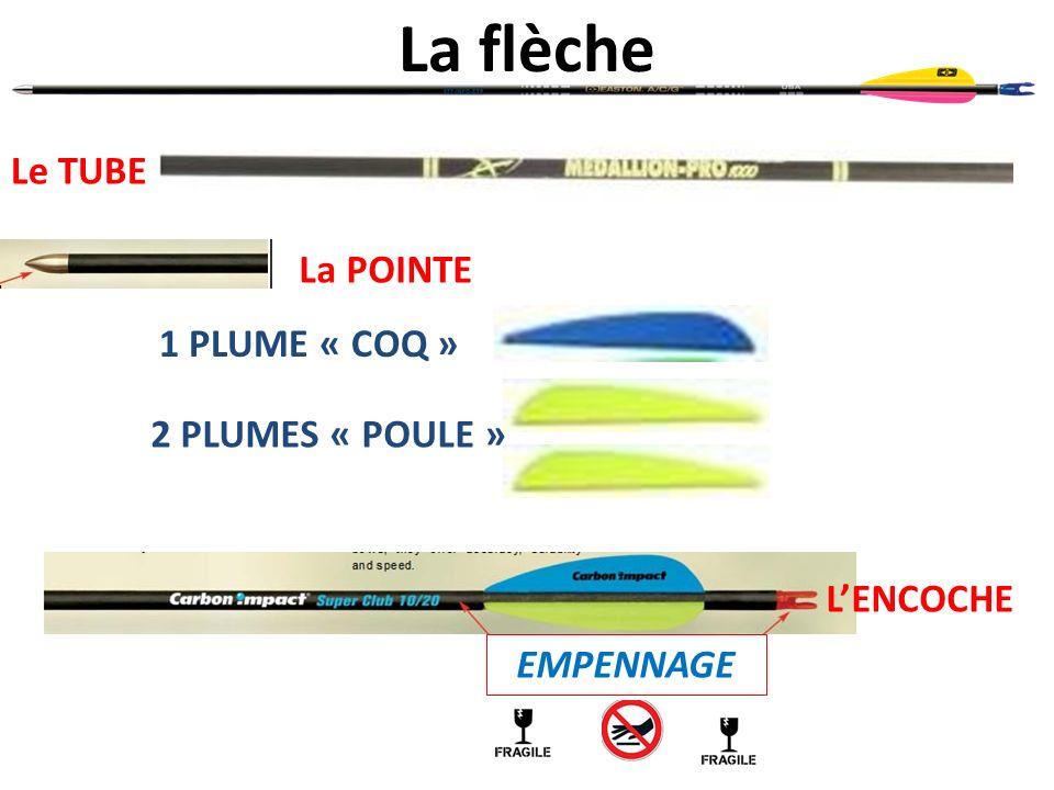 La flèche Le TUBE La POINTE 1 PLUME « COQ » 2 PLUMES « POULE »