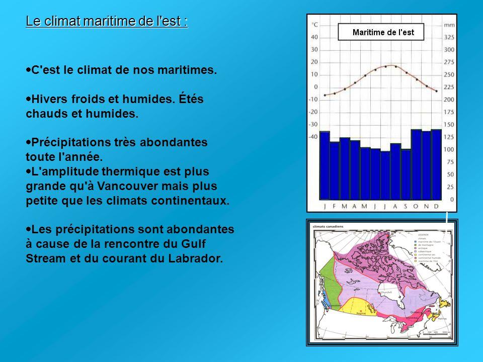 Le climat maritime de l est :
