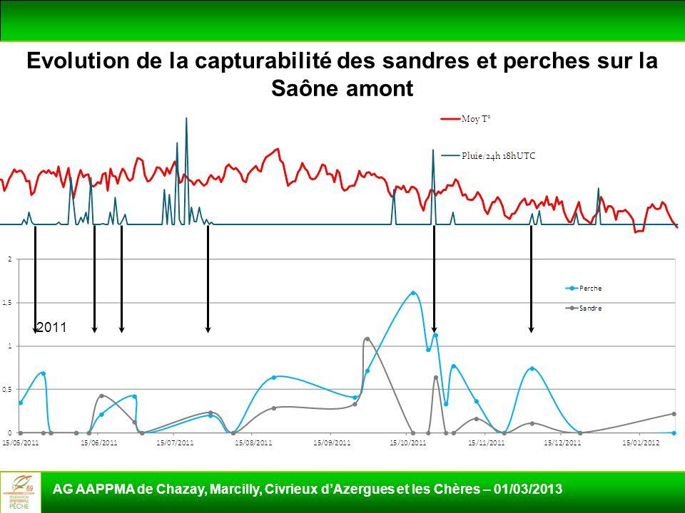 Evolution de la capturabilité des sandres et perches sur la Saône amont