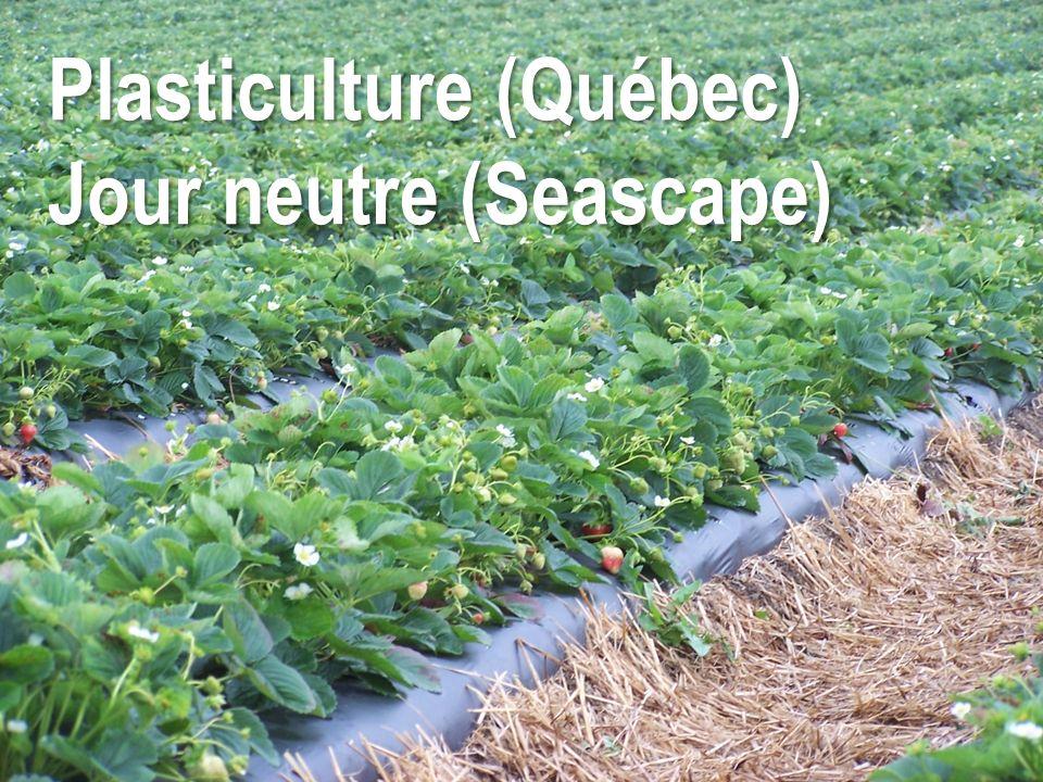 Plasticulture (Québec)