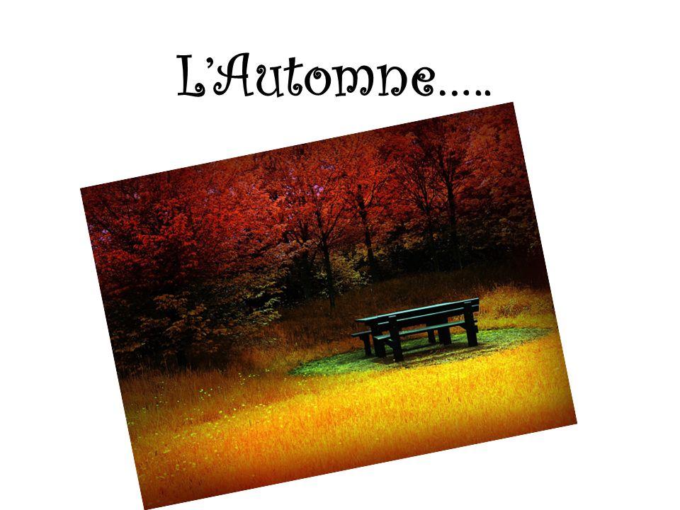 L'Automne…..