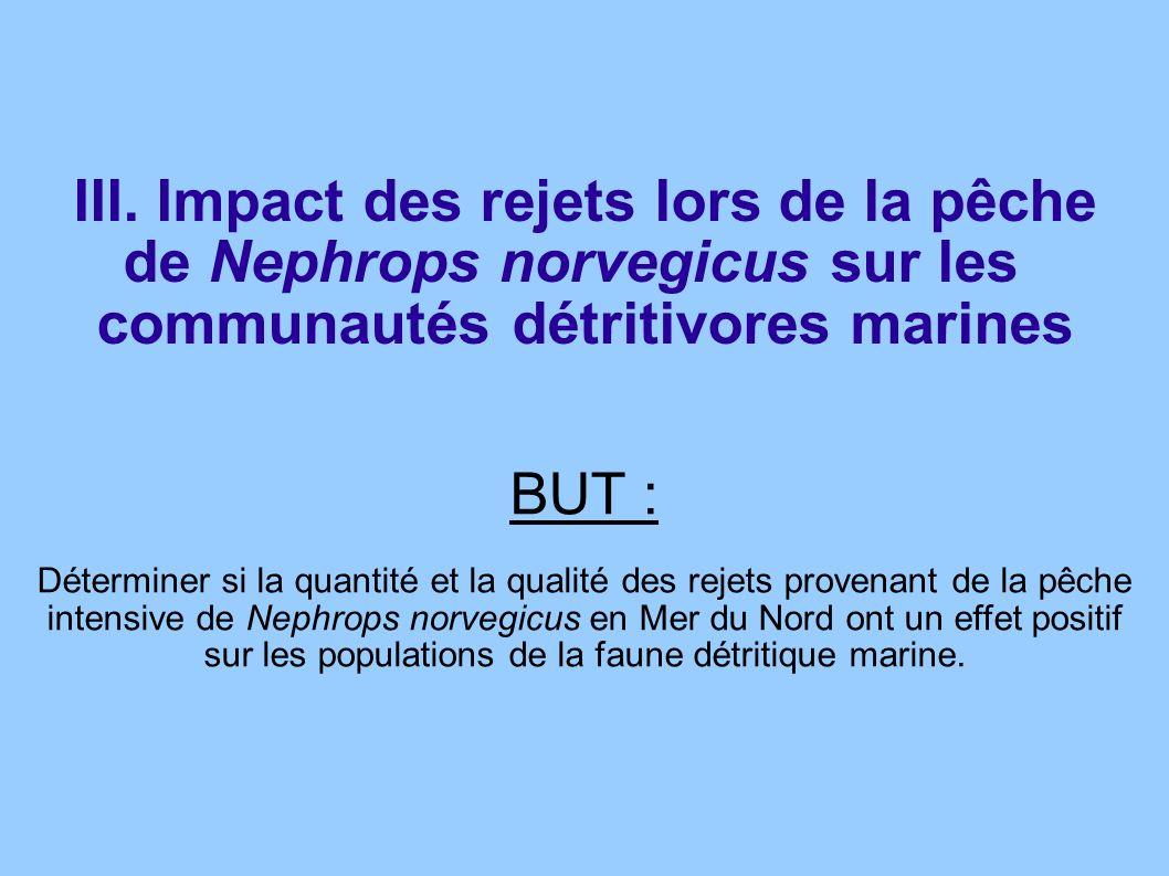 III. Impact des rejets lors de la pêche de Nephrops norvegicus sur les