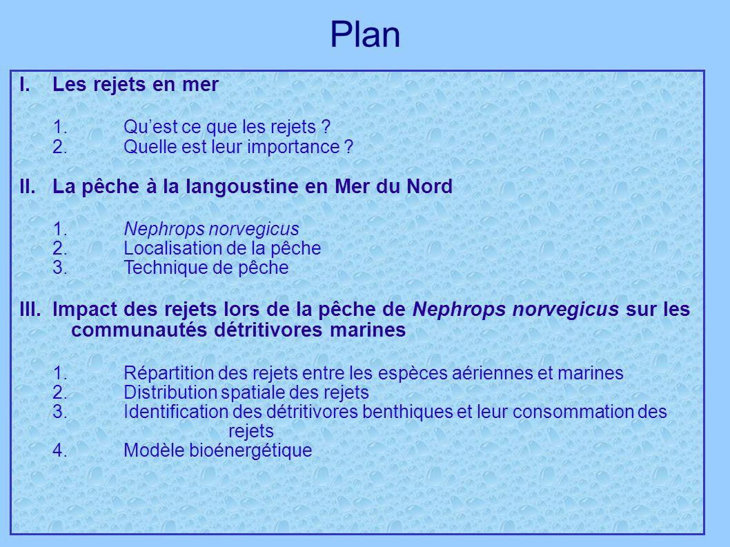 Plan I. Les rejets en mer 1. Qu'est ce que les rejets