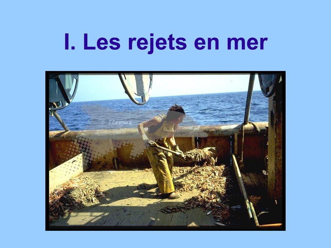 I. Les rejets en mer