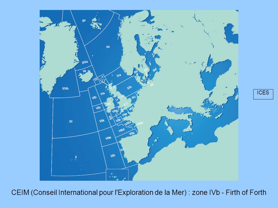 ICES CEIM (Conseil International pour l Exploration de la Mer) : zone IVb - Firth of Forth