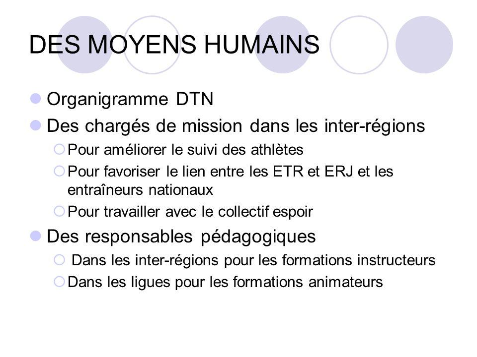 DES MOYENS HUMAINS Organigramme DTN