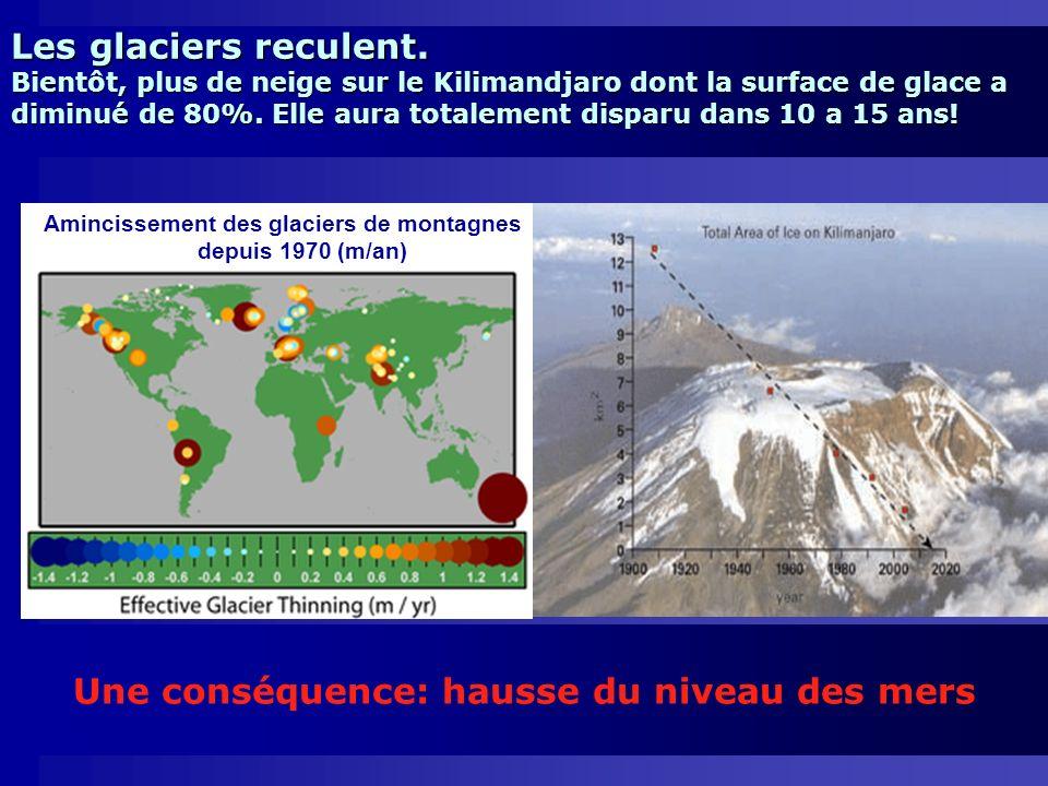 Une conséquence: hausse du niveau des mers