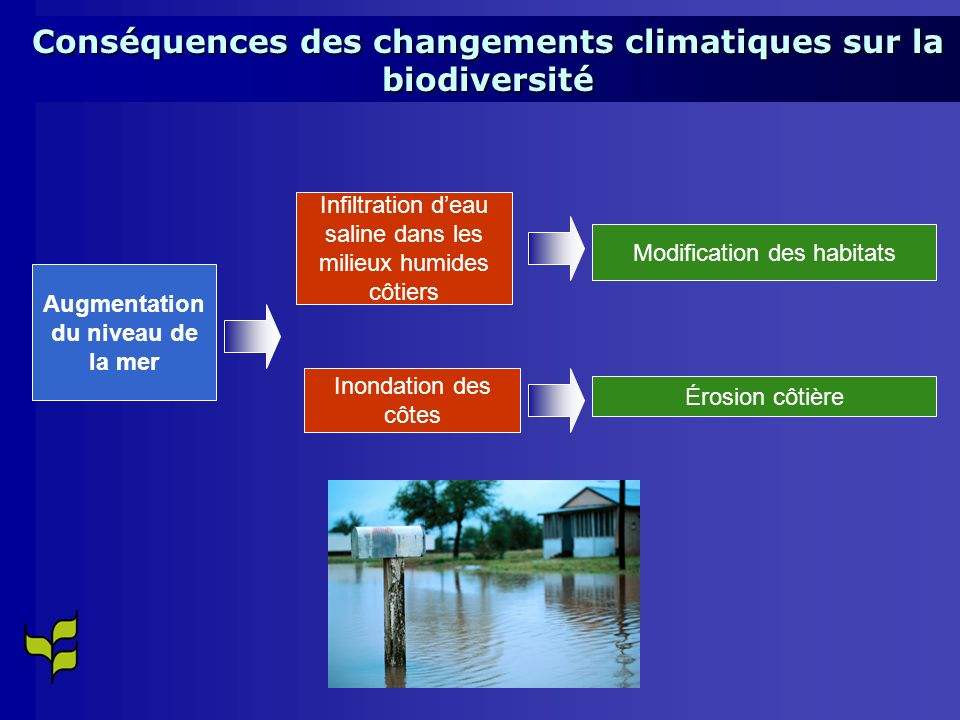 Conséquences des changements climatiques sur la biodiversité