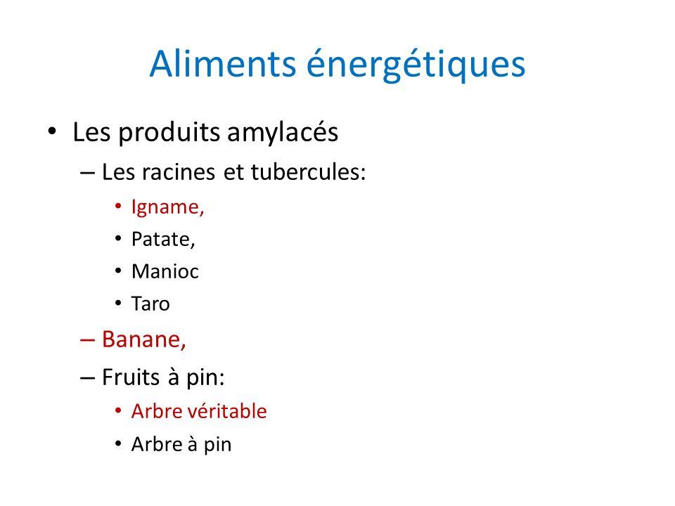 Aliments énergétiques