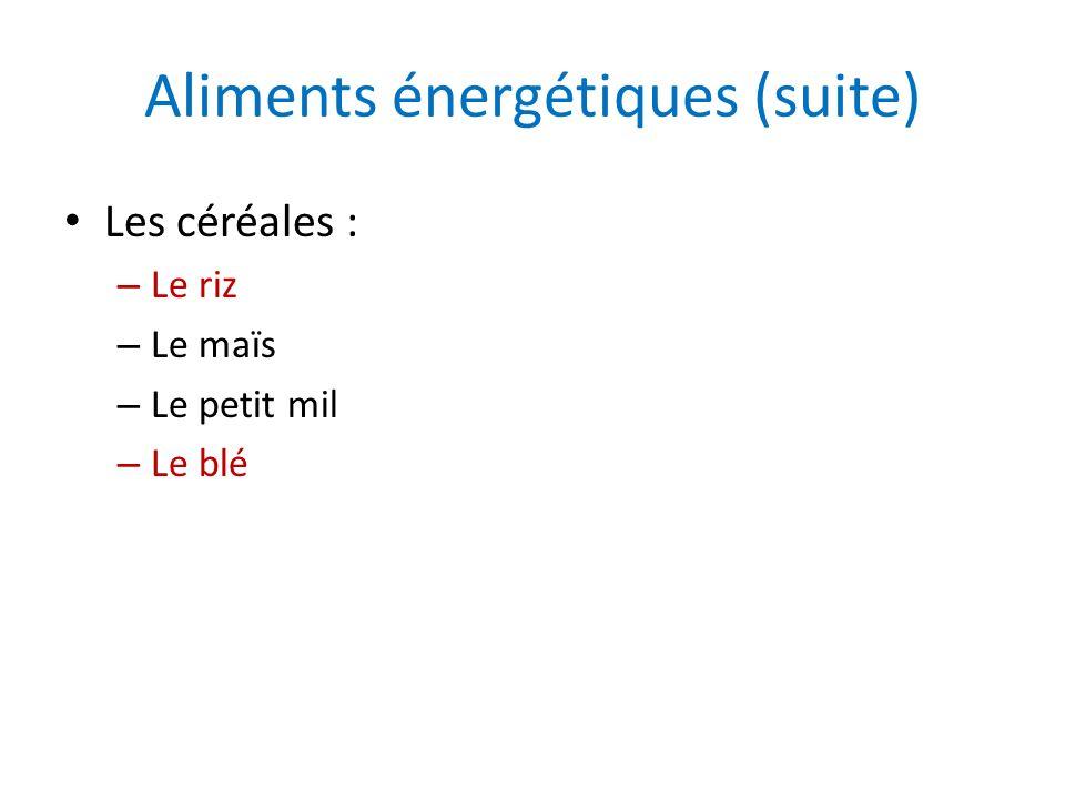 Aliments énergétiques (suite)